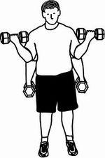 Bicepscurl stående